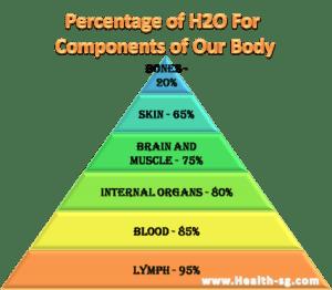 www.health-sg.com